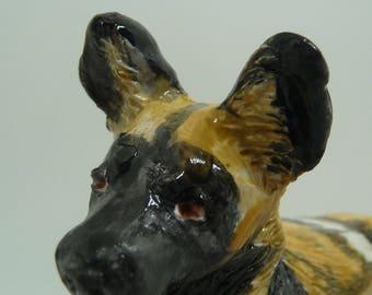 African Wild Dog Crra