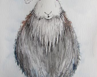Herdwick sheep original watercolour painting, Herdwick painting, Herdwick picture
