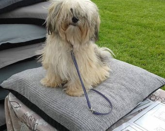 Ecofriendly Orthopedic Dog Mattress for Small Breeds.... or Cats