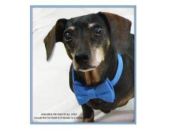 Blue Bow Tie Dog Collar~Cornflower Blue Satin Bow Tie~Wedding Dog Attire~Wedding Dog Collar~Dog Ring Bearer~Dog Tuxedo~Dog Bow Tie Collar~