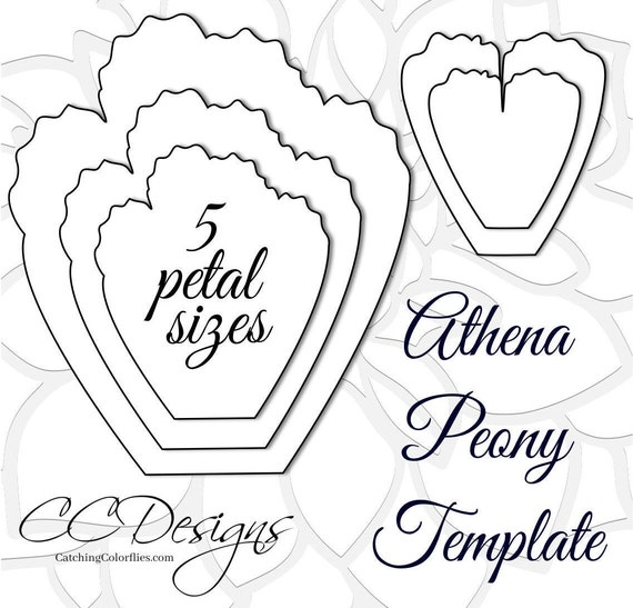 Giant paper peonies printable pdf flower templates peony pdf for Big flower paper template