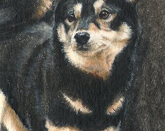 Shiba ORIGINAL ACEO Painting Acrylic