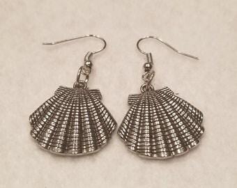 Seashell earrings
