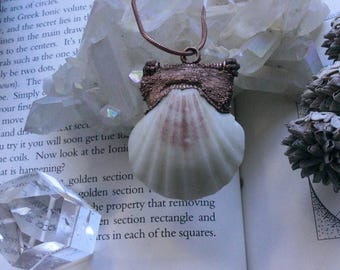 Copper seashell necklace