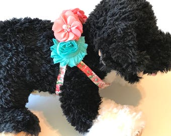 Coral and Turquoise Step In Dog Harness ~ Turquoise Dog Harness -  Girl Dog Harness - Step in Harness - Pet Accessories