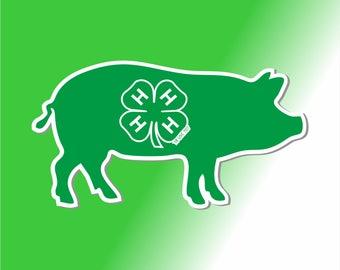 4-H Pig