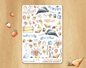 SUMMER 2017 - Watercolor Stickers For Holidays, Perfectly Fitting Erin Condren Life Planners and Happy Planners: Diverses Illustrations