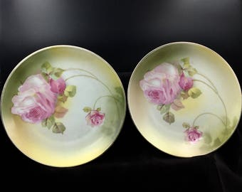 Antique German Plates, Pair of German Plates with Roses