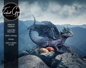 Realistic Dragon Overlay