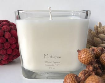Mistletoe, Christmas, Holiday, 100% All Natural Soybean Candle, 12 oz., Eco Friendly, Clean Burning, No Color or Dyes, MADE IN USA
