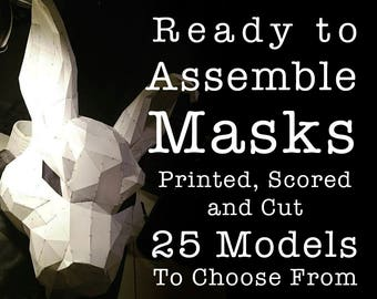 Ready To Assemble Masks