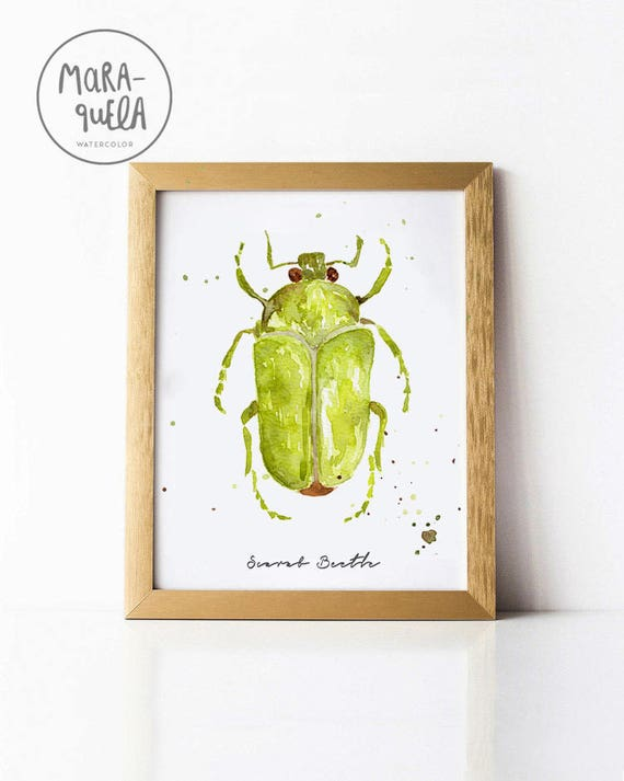 Green SCARAB Beetle Illustration watercolor - Ilustracion Escarabajo en acuarela