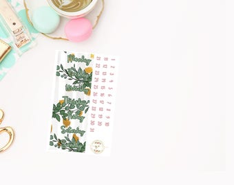 Forever and Always Date Covers add on, planner stickers