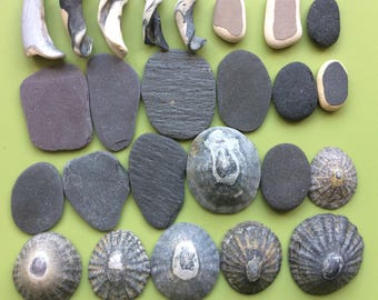 Scottish beach finds , beach finds , beachcombed , limpet shells , shell pieces , pebbles , Scottish slate , slate pieces , beach pottery