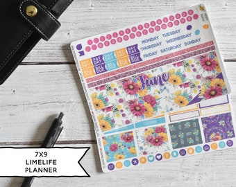Monthly Planner Stickers Kit Made To Fit The 7x9 Limelife Planner | You pick the month! 186L1-2