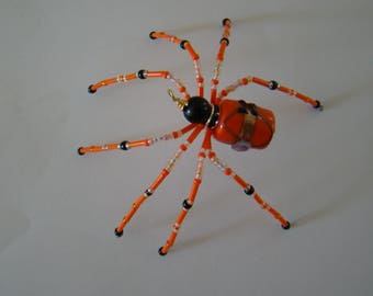 The Halloween  Spiders -Jimmy