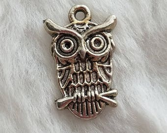 Owl charms - Package of 10