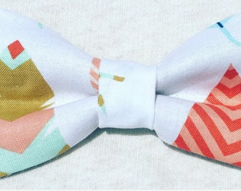 Bow Tie - Multicolored Feather