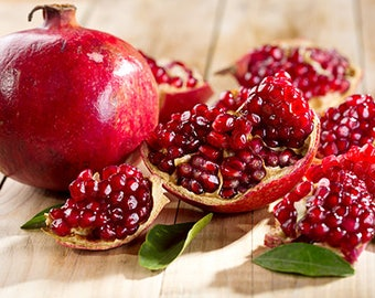 Punica Granatum 25-1000 Seeds, Pomegranate Edible Fruit Shrub Tree Bonsai