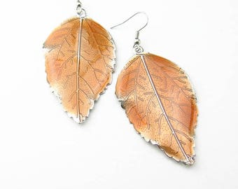 BOFA05012 enamel leaf earrings