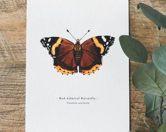 Red Admiral Butterfly A5 Print