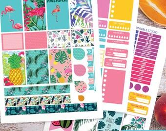 Summer Printable Planner Stickers Kit BIG MAMBI Happy planner , Weekly Kit, Summer Tropical Printable Sampler,Instant download BIG Happy