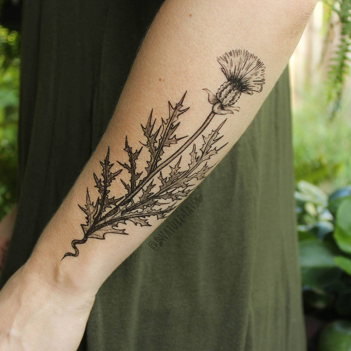 purple thistle flower temporary tattoo black line drawing nature tattoo. Black Bedroom Furniture Sets. Home Design Ideas