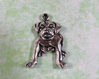 10 Antique Silver Bulldog Charms - 3D 13 x 16mm  (B367j)