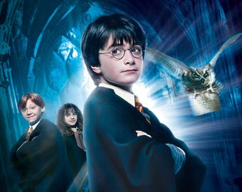 FREE SHIPPING Harry Potter and the Sorcerers Stone movie poster 11x17