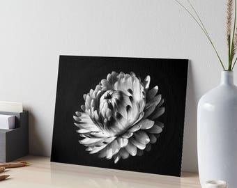 living room art decor. BNW Fine Art Flower Bnw Photograpy Paper Daisy Large Print  Bedroom Decor Living room wall art Etsy