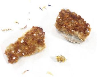 One Citrine Cluster Crystal