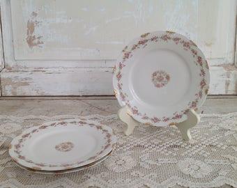 Set of 3 Antique Haviland Limoges France Pink Floral Gold Scalloped Rim Dinner Plates