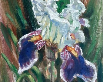 "Original Oil Painting, Iris flower, 9""x7"", 1707197"