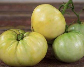Rare Belyy Giant White Beefsteak Tomato  100 Seeds  Pack Edible Tasty Fruits