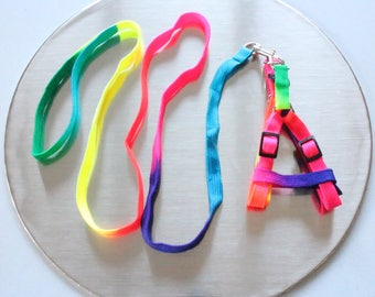 Rainbow Leash / Bunny harness / Leash for rabbits and small pets