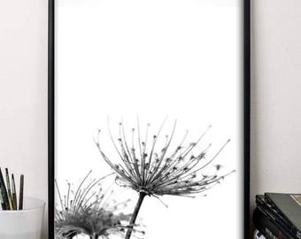 Wall art flowers print black and white poster minimalist print autumn print botanical illustrations print home decor office decor printable