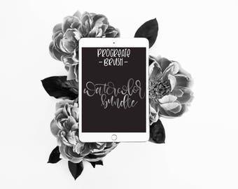 Watercolor Brush Pair + Bonus Digital Paper - Procreate Brush - iPad Pro - Instant Download - Custom Brush for Hand Lettering