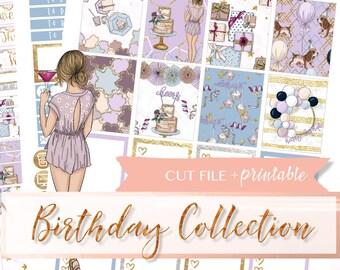 BIRTHDAY PRINTABLE planner STICKERS, birthday planner kit, party planner sticker kit, printable stickers weekly, celebrate planner kit, diy
