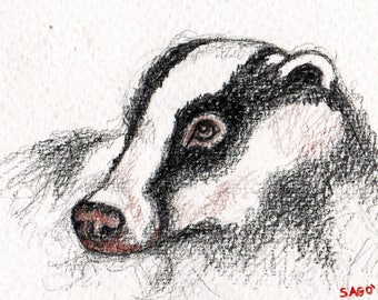 """Aceo Drawing colored pencils miniature rate """"Badger"""" coloured pencils"""