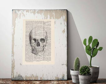 Print Skull No. 5-On Antique page