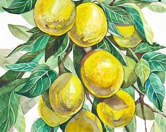 Lemons watercolor Lemon painting ORIGINAL watercolor Lemons branch Kitcnen art Botanical painting Lemon tree Summer art