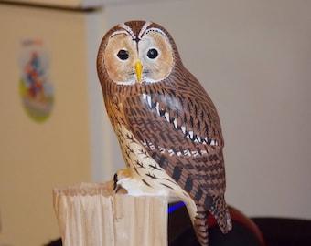 Tawny Owl - Strix aluco - bird sculpture