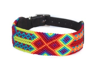 Lemon Burst Dog Collar - Yellow/Red/Blue