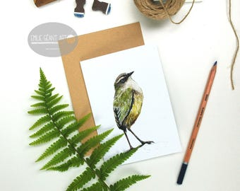 Rock Wren - Tuke bird folded card from the New Zealand native birds series by Emilie Geant, from original watercolor painting