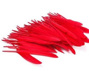 10 Red goose feathers