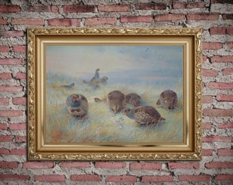 Victorian art. Archibald Thorburn Limited Edition Print. Frosty Dawn. Wild Birds.