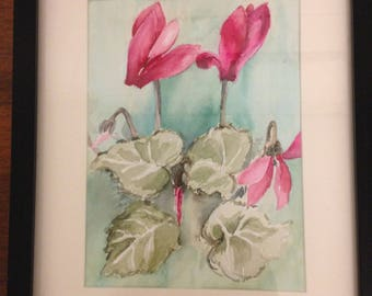 Original watercolour cyclamen