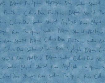 Blue patchwork melody WORLD from Quilting treasures fabric