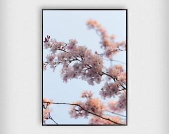 Blossom Print | Botanical | Pink | Cherry Blossom - Tree - Poster