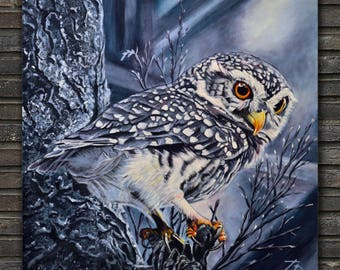 Forest. Owl.